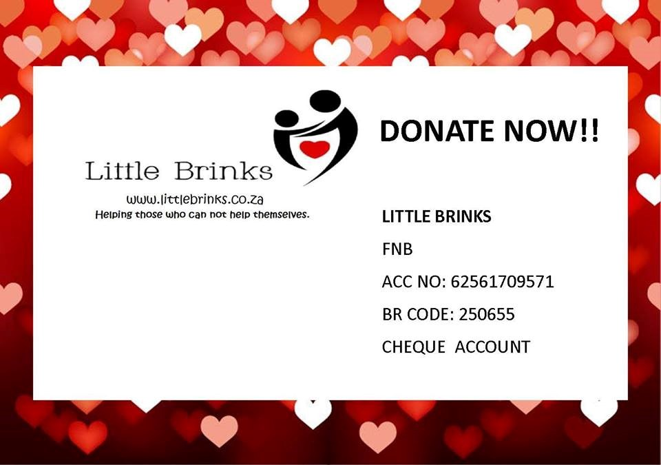 Donate To Little Brinks